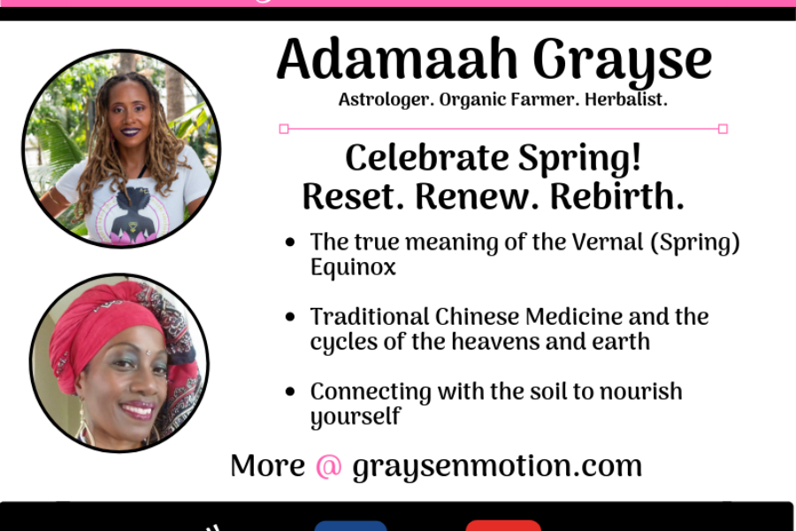 Happy Spring…Renew.Reset.Rebirth!
